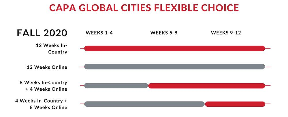 CAPA Global Cities Flexible Choice Fall 2020-2